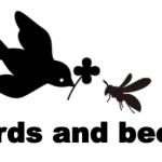 子供達の為の性教育「birds and bees」